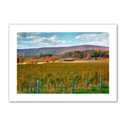 "ArtWall ""Vineyard in Autumn"" Unwrapped Canvas Arts By Steve Ainsworth"