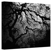 ArtWall Japanese Ying and Yang Tree Gallery Wrapped Canvas Art By John Black, 14 x 18