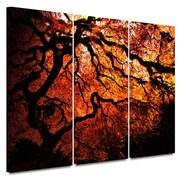 "ArtWall ""Japanese Tree"" Gallery Wrapped 3 Piece Canvas Art By John Black, 24"" x 36"""