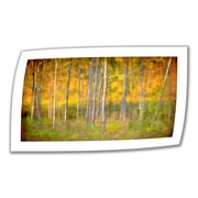 "ArtWall ""Into the Wood"" Unwrapped Canvas Art By David Liam Kyle, 18"" x 32"""