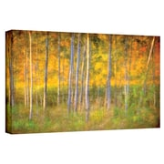 "ArtWall ""Into the Wood"" Gallery Wrapped Canvas Art By David Liam Kyle, 10"" x 18"""