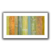 "ArtWall ""Bamboo Green Orange"" Flat Unwrapped Canvas Art By Cora Niele, 12"" x 24"""