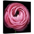 ArtWall in.Pink IIin. Gallery Wrapped Canvas Arts By Cora Niele