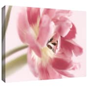 ArtWall Sensuous Gallery Wrapped Canvas Art By Cora Niele, 24 x 36