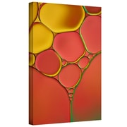 "ArtWall ""Stained Glass I"" Gallery Wrapped Canvas Art By Cora Niele, 16"" x 24"""