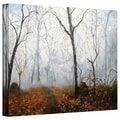 ArtWall in.Autumn Mistin. Gallery Wrapped Canvas Arts By Marina Petro