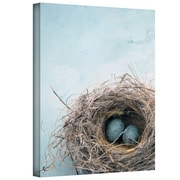 "ArtWall ""Blue Nest"" Gallery Wrapped Canvas Art By Elena Ray, 24"" x 16"""
