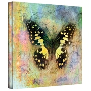 ArtWall Butterfly Black n Yellow Gallery Wrapped Canvas Art By Elena Ray, 24 x 24