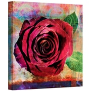 ArtWall Rose Gallery Wrapped Canvas Art By Elena Ray, 14 x 14