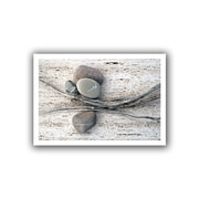 ArtWall Still Life Sticks Stones Unwrapped Canvas Art By Elena Ray, 12 x 18