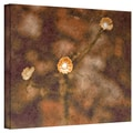 ArtWall in.Center of Attentionin. Wrapped Canvas Arts By Mark Ross