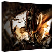 "ArtWall ""Mend"" Wrapped Canvas Arts By Mark Ross"