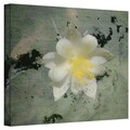ArtWall in.US 91in. Wrapped Canvas Arts By Mark Ross
