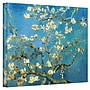 ArtWall Almond Branches in Bloom Flat/Rolled Canvas Art