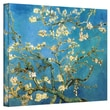ArtWall in.Almond Blossomin. Gallery Wrapped Canvas Art By Vincent Van Gogh, 24in. x 32in.