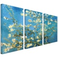 ArtWall in.Almond Blossomin. 3 Piece Gallery Wrapped Canvas Arts By Vincent Van Gogh