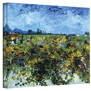 "ArtWall ""Green Vineyard"" Gallery Wrapped Canvas Art By Vincent Van Gogh, 14"" x 18"""