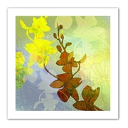 """ArtWall """"Orchid Shadow"""" Flat Unwrapped Canvas Art By Jan Weiss, 14"""" x 14"""""""