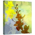 ArtWall in.Orchid Shadowin. Gallery Wrapped Canvas Arts By Jan Weiss