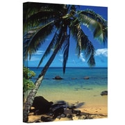 "ArtWall ""Beautiful Animi Beach"" Gallery Wrapped Canvas Arts By Kathy Yates"