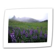 "ArtWall ""Figueroa Mountain with Fog"" Flat/Rolled Canvas Arts By Kathy Yates"
