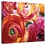 ArtWall Ranunculus Close Up Gallery Wrapped Canvas Art