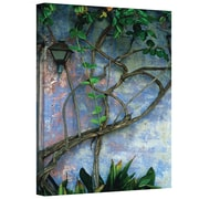 "ArtWall ""Vine and Wall"" Gallery Wrapped Canvas Art By Kathy Yates, 12"" x 18"""
