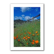 """ArtWall """"Poppies and The Fence"""" Unwrapped Canvas Arts By Kathy Yates"""