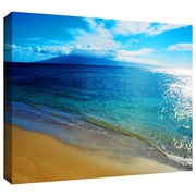 "ArtWall ""Blue Hawaii"" Gallery Wrapped Canvas Arts By Kathy Yates"