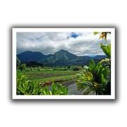 "ArtWall ""A Taro Farm in Hanalei"" Unwrapped Canvas Arts By Kathy Yates"