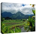 ArtWall in.A Taro Farm in Hanaleiin. Gallery Wrapped Canvas Arts By Kathy Yates