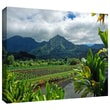 "ArtWall ""A Taro Farm in Hanalei"" Gallery Wrapped Canvas Arts By Kathy Yates"