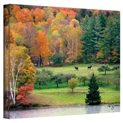 "ArtWall ""Killington Vermont"" Gallery Wrapped Canvas Art By George Zucconi, 14"" x 18"""