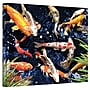 ArtWall Koi Gallery Wrapped Canvas Art By George