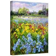 "ArtWall ""Hoeing Team and Iris Fields"" Gallery Wrapped Canvas Art By Timothy Easton, 20"" x 24"""