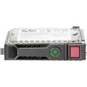 HP® Midline 2TB 3.5 SAS (6Gb/s) SC Internal Hard Drive