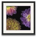 Epic Art Flora Moderna Dahlia I Framed Graphic Art; Print Only
