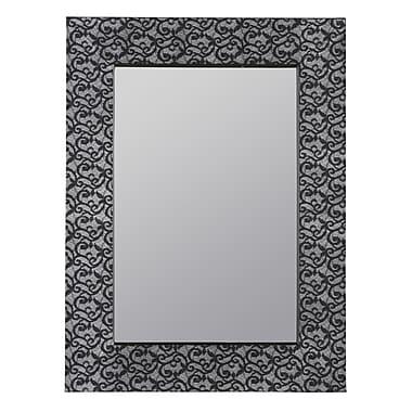 Cooper Classics Hasburg Mirror