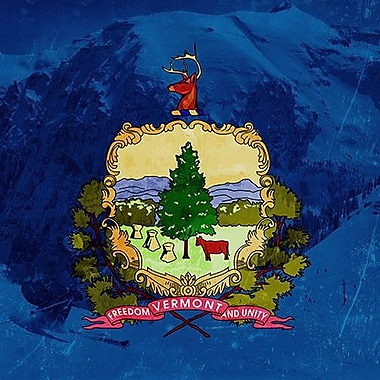 iCanvas Flags Vermont Skiing Graphic Art on Wrapped Canvas; 18'' H x 18'' W x 1.5'' D