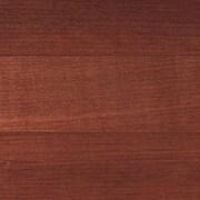 Columbia flooring wilson maple 5 39 39 engineered maple for Wood flooring columbia sc