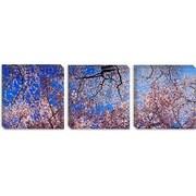 iCanvas Panoramic Washington State Photographic Print on Canvas; 24'' H x 72'' W x 1.5'' D