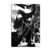 iCanvas Political Wall Street Bull Close-up Photographic Print on Canvas; 26'' H x 18'' W x 1.5'' D