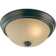 Volume Lighting Trinidad 1 Light Ceiling Fixture Flush Mount