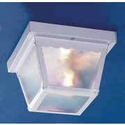 Volume Lighting 1 Light Outdoor Ceiling Mount; White