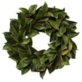Jane Seymour Botanicals Magnolia Leaf Wreath
