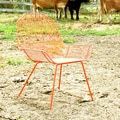 Bend Goods Farmhouse Lounge Chair; Orange