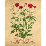 Evive Designs Poppies Vintage Style by The Evie Empire Painting Print