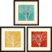 Paragon Fallen Leaves by Fontaine Framed Shadow Box Art (Set of 3)