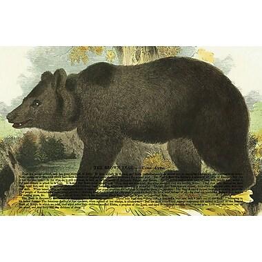 Belle Banquet Black Bear Placemat (Set of 6)