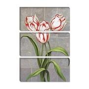 iCanvas 'Red-Striped Tulips' by John Zaccheo Graphic Art on Canvas; 12'' H x 8'' W x 0.75'' D